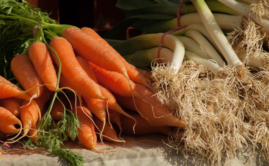 agricoltura in sardegna i nuovi orti urbani