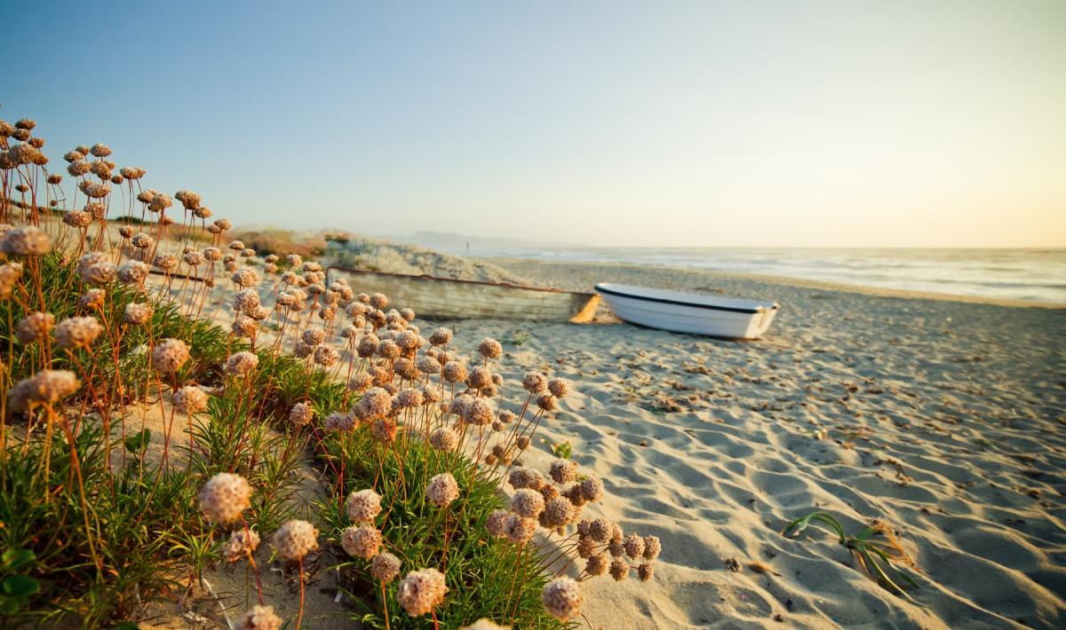 spiaggia li junchi al tramonto